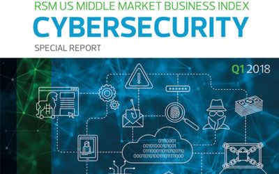 RSM Released Cyber Security Report
